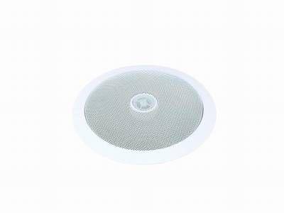 100 Volt / ELA Lautsprecher OMNITRONIC CST6 2-Wege